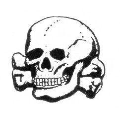 Logo Caveira SS
