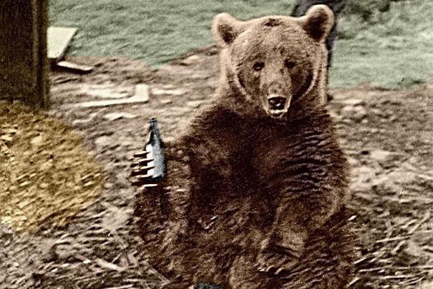 Wojtek com uma garrafa de cerveja nas garras