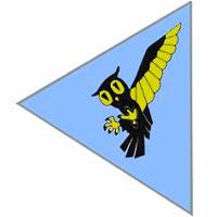 113º Esquadrão de Caça