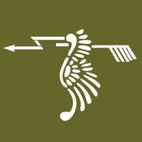 121º Esquadrão de Caça