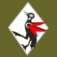 131º Esquadrão de Caça