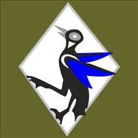 132º Esquadrão de Caça