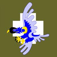 151º Esquadrão de Caça