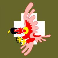 152º Esquadrão de Caça